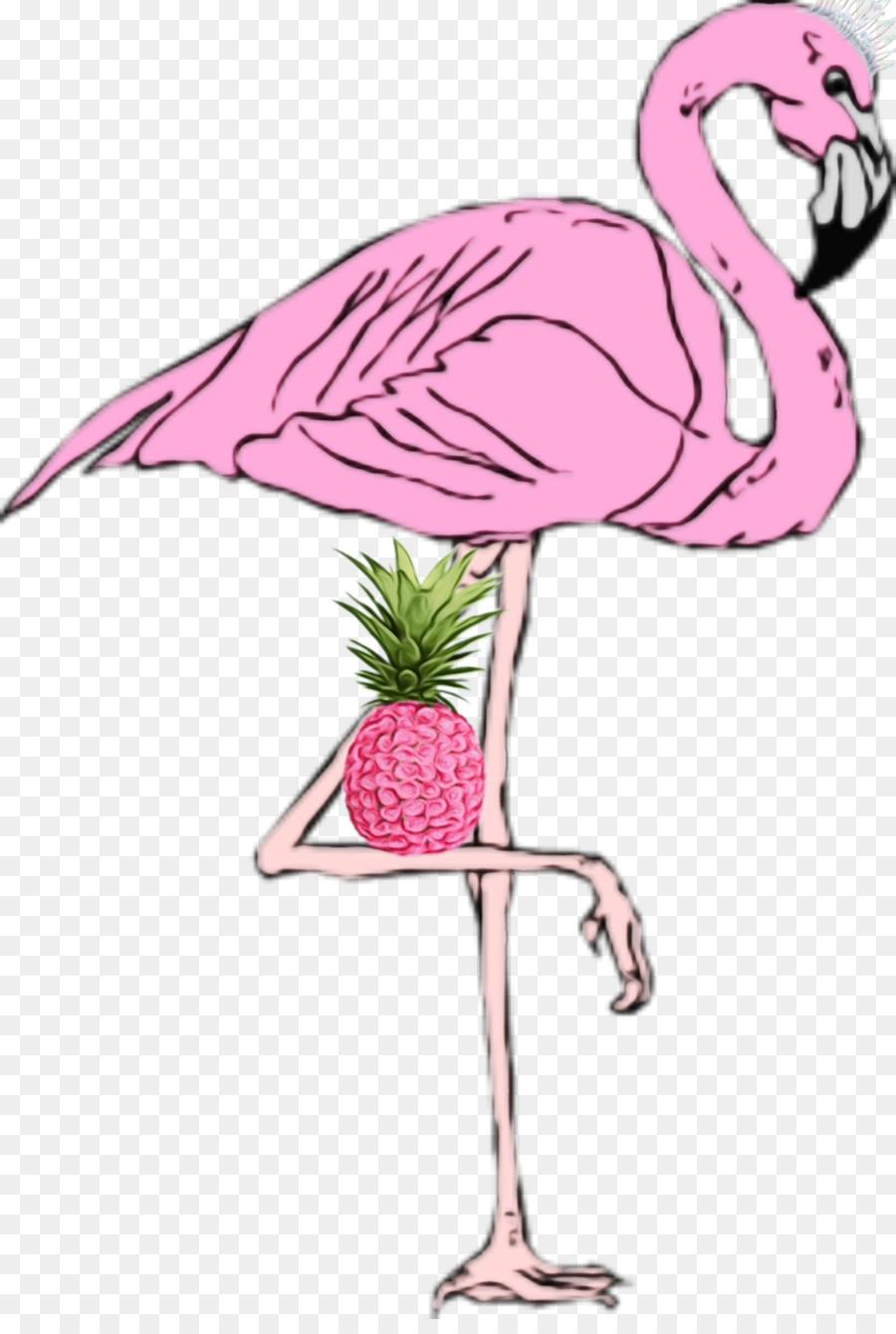 Descarga gratuita de Flamingo, Aves, Rosa Imágen de Png