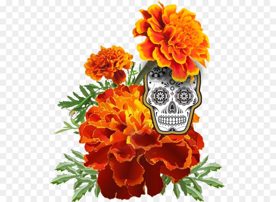 Descarga gratuita de Mexicana De Caléndula, Día De Los Muertos, Dibujo Imágen de Png