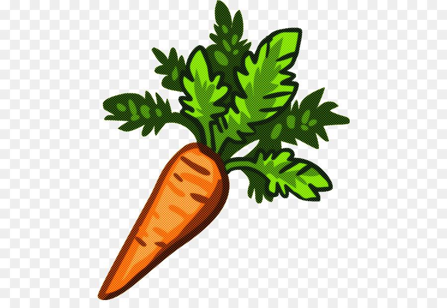 Zanahoria Pastel De Zanahoria Dibujo Imagen Png Imagen Transparente Descarga Gratuita Propiedades de la zanahoria y el pepino. zanahoria pastel de zanahoria dibujo