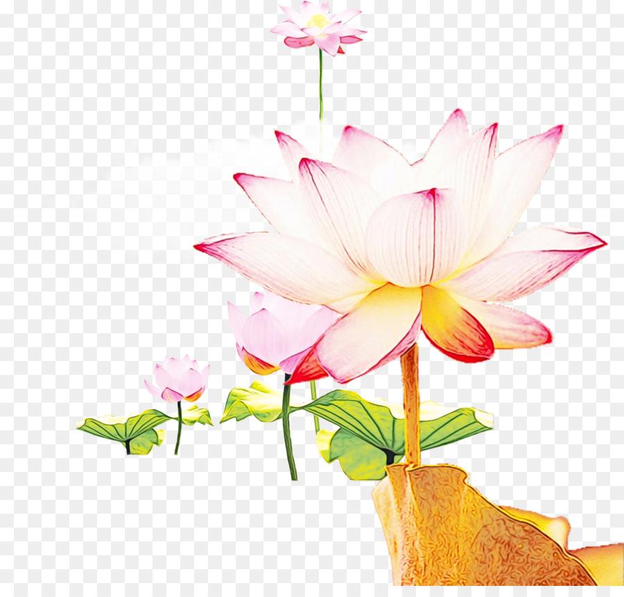 Descarga gratuita de Diseño Floral, Las Flores Cortadas, Tallo De La Planta imágenes PNG