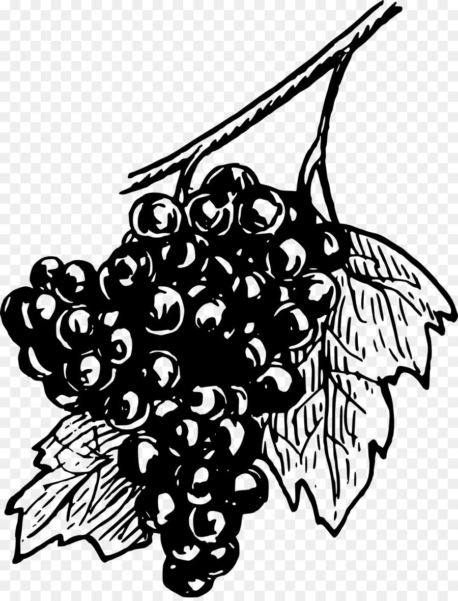 Descarga gratuita de Común De La Uva De La Vid, Uva Concord, Vino Imágen de Png