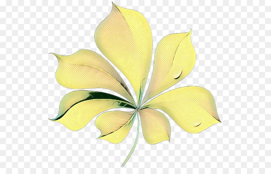 Descarga gratuita de Las Flores Cortadas, Amarillo, Pétalo Imágen de Png