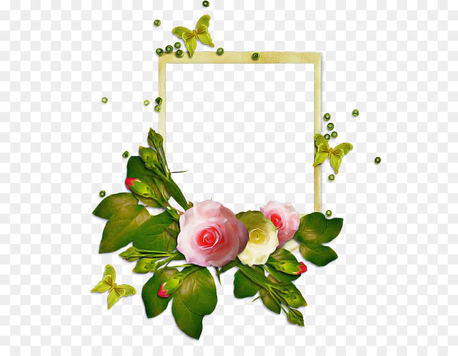 Descarga gratuita de Las Rosas De Jardín, Flor, Las Flores Cortadas Imágen de Png