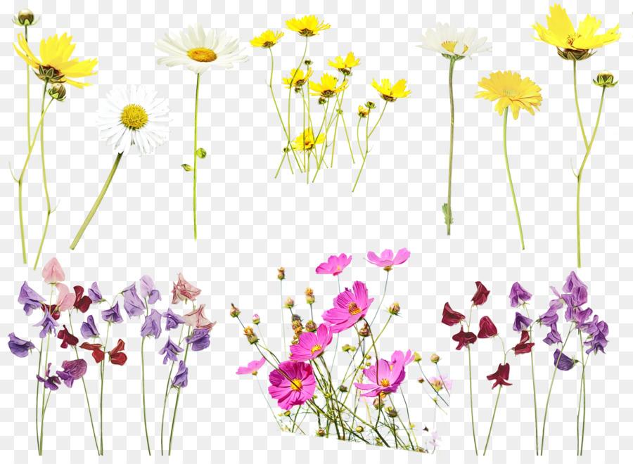 Descarga gratuita de Flor, Planta, Flores Silvestres imágenes PNG