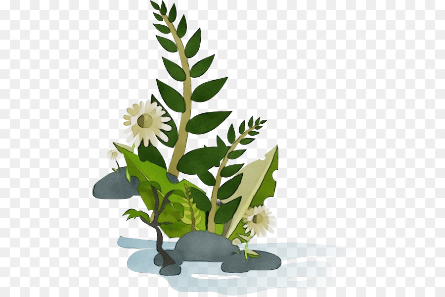 Descarga gratuita de Maceta, Flor, Planta Imágen de Png