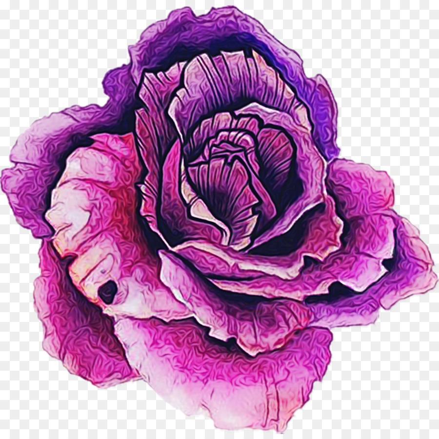 Descarga gratuita de Violeta, Rosa, Pétalo Imágen de Png