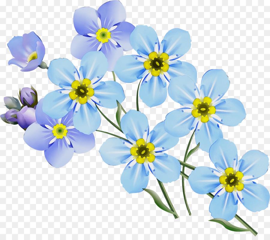 Descarga gratuita de La Floración De La Planta, Alpine Forgetmenot, Flor Imágen de Png