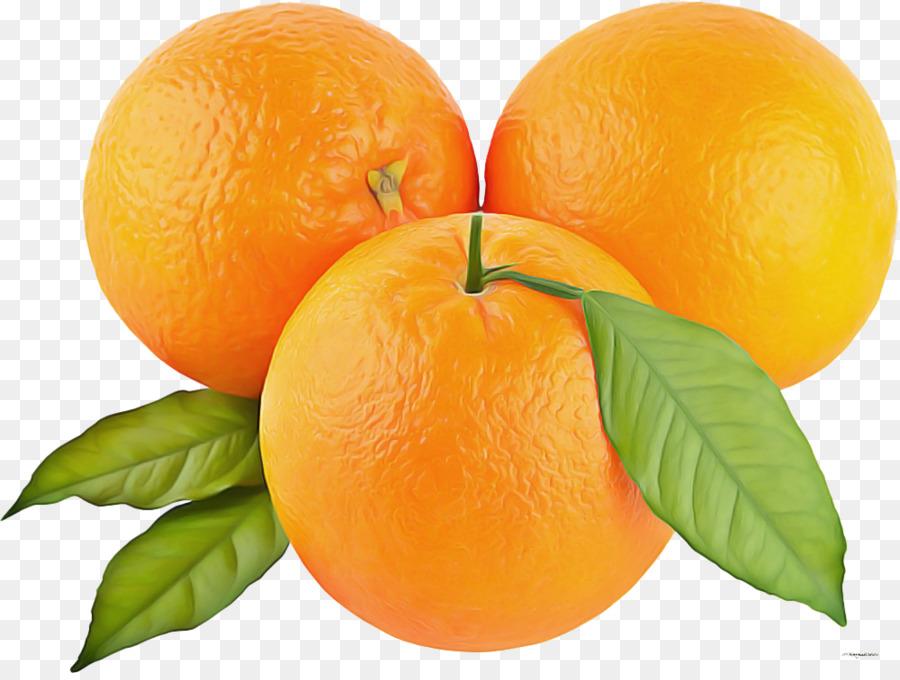 Descarga gratuita de La Fruta, Naranja, Cítricos imágenes PNG