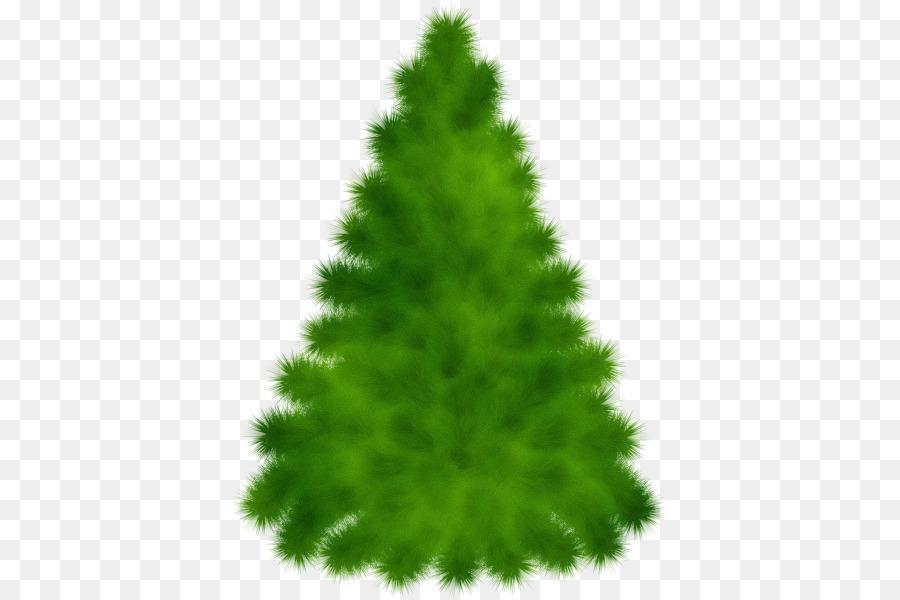 Descarga gratuita de árbol, Pino Rojo, Verde Imágen de Png