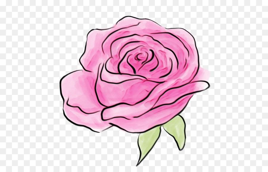 Descarga gratuita de Las Rosas De Jardín, Rosa, Híbrido De Té De Rosa Imágen de Png