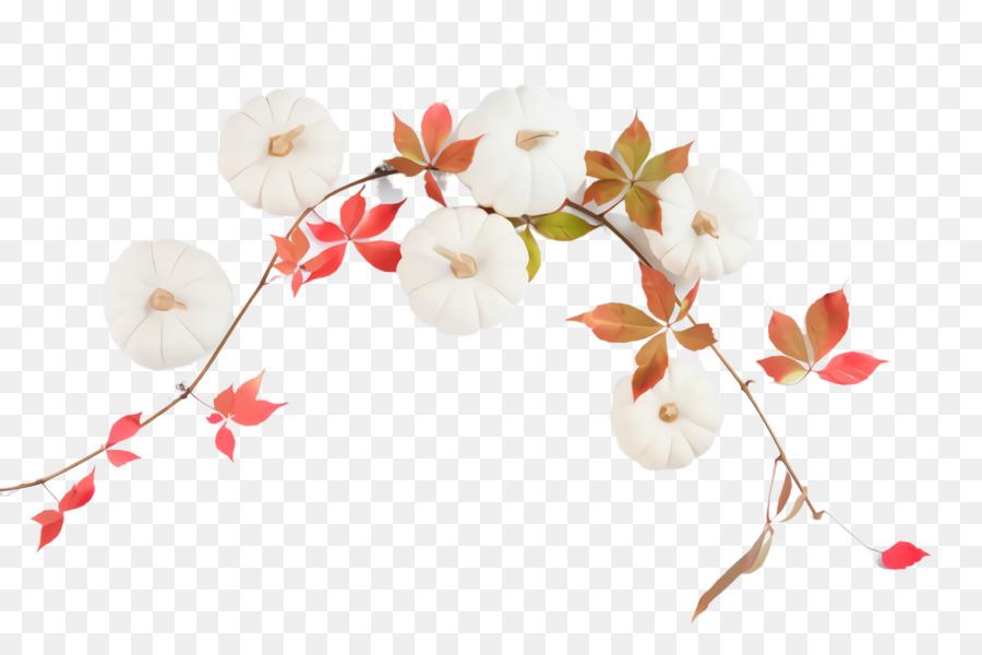 Descarga gratuita de Blanco, Rama, Flor imágenes PNG