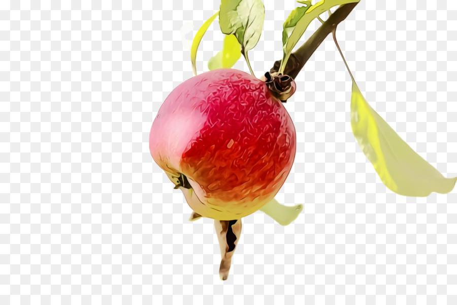 Descarga gratuita de La Fruta, Alimentos Naturales, La Comida Imágen de Png