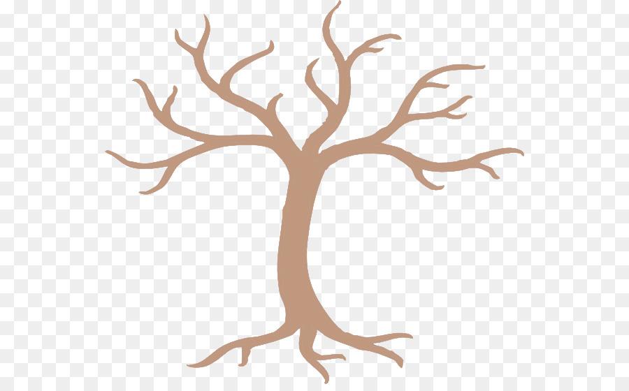 Descarga gratuita de árbol, Rama, Planta Imágen de Png