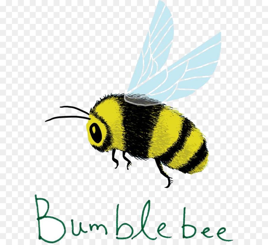 Descarga gratuita de Los Insectos, Abeja, Honeybee imágenes PNG