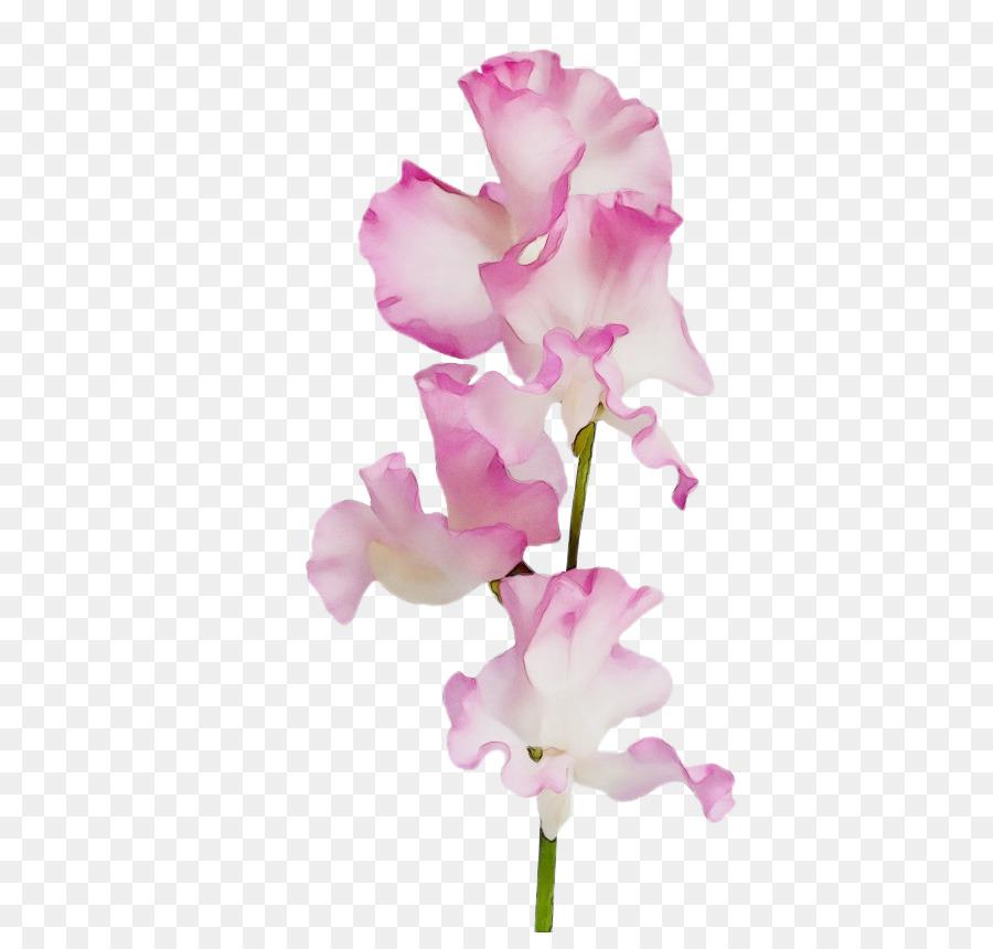 Descarga gratuita de Flor, La Floración De La Planta, Rosa Imágen de Png