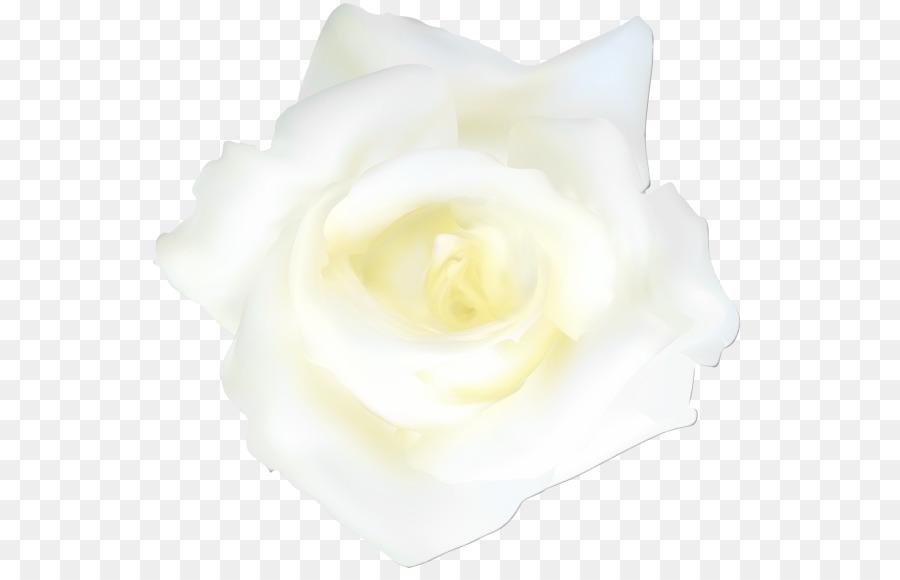 Descarga gratuita de Blanco, Amarillo, Rosa Imágen de Png