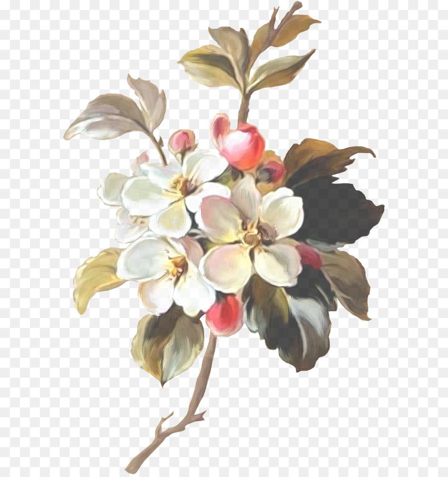 Descarga gratuita de Flor, Planta, La Floración De La Planta imágenes PNG