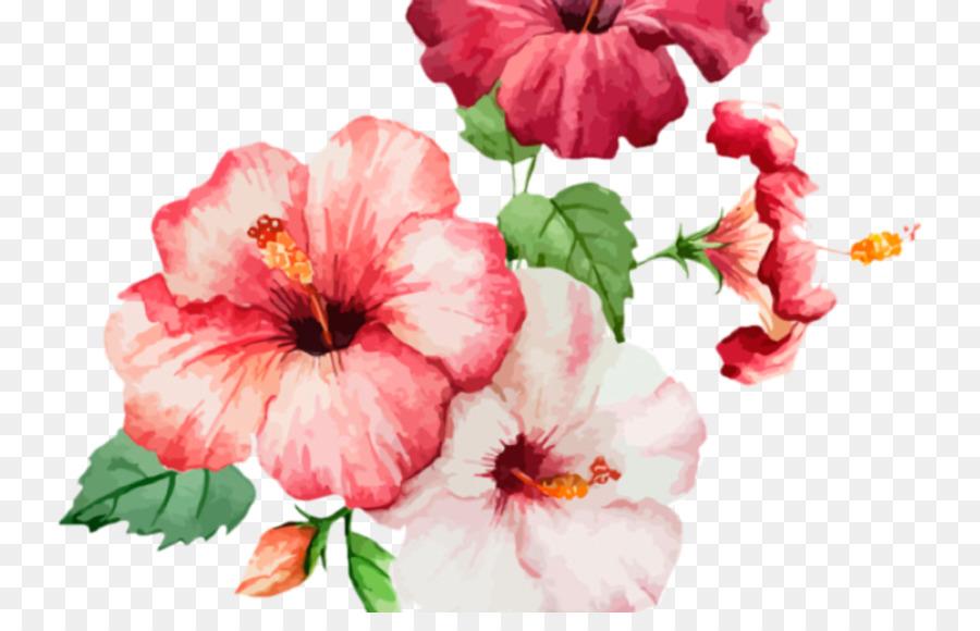 Descarga gratuita de Flor, La Floración De La Planta, Pétalo Imágen de Png