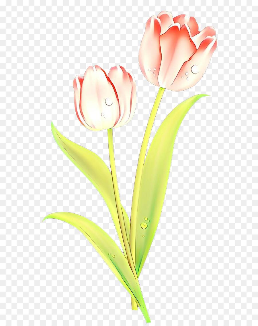Descarga gratuita de Flor, La Floración De La Planta, Tulip Imágen de Png
