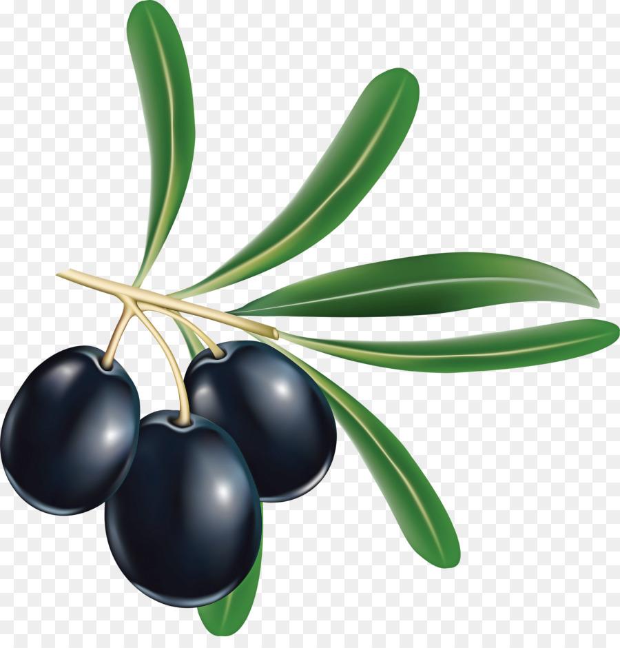 Descarga gratuita de De Oliva, La Fruta, Planta Imágen de Png