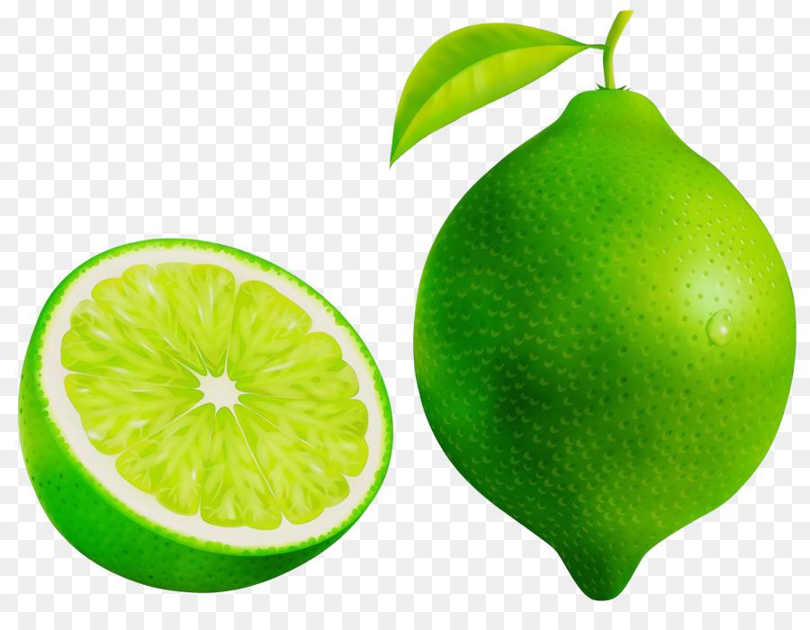 Descarga gratuita de Persa Limón, La Fruta, Verde Imágen de Png
