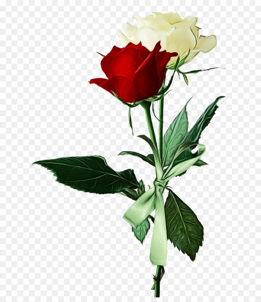 Descarga gratuita de Flor, La Floración De La Planta, Planta imágenes PNG