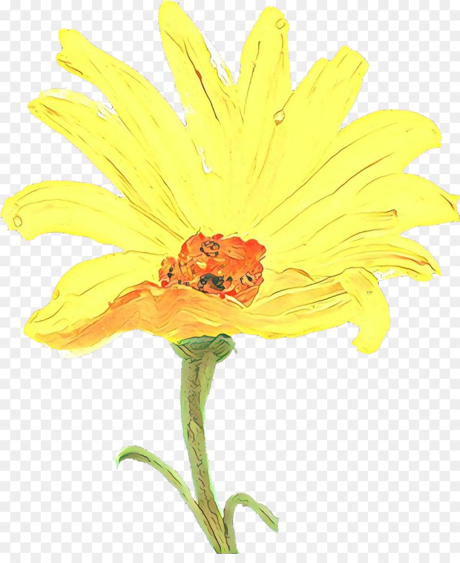 Descarga gratuita de Flor, Amarillo, La Floración De La Planta Imágen de Png