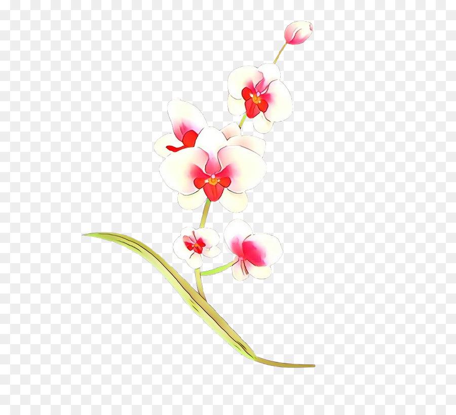 Descarga gratuita de La Floración De La Planta, Flor, Planta Imágen de Png