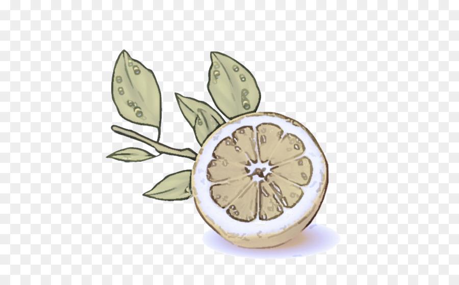 Descarga gratuita de Hoja, Limón, Cítricos Imágen de Png