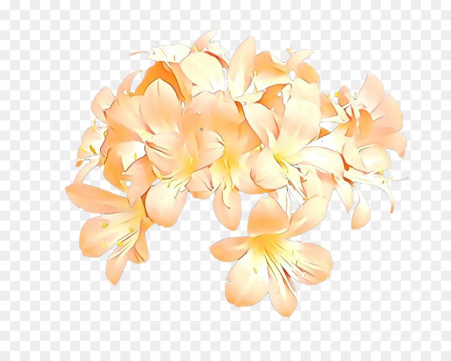 Descarga gratuita de Flor, Frangipani, Naranja imágenes PNG