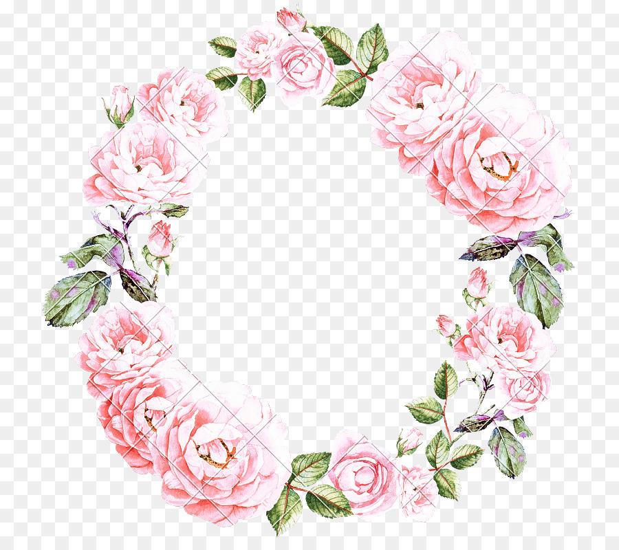 Descarga gratuita de Rosa, Flor, Planta Imágen de Png