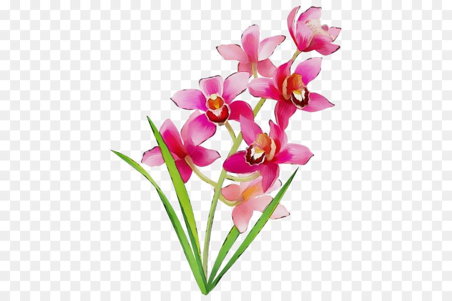 Descarga gratuita de Flor, Pétalo, Las Flores Cortadas Imágen de Png