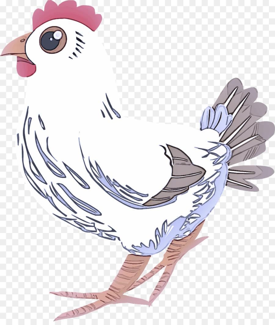 Descarga gratuita de Aves, Ala, Pico Imágen de Png