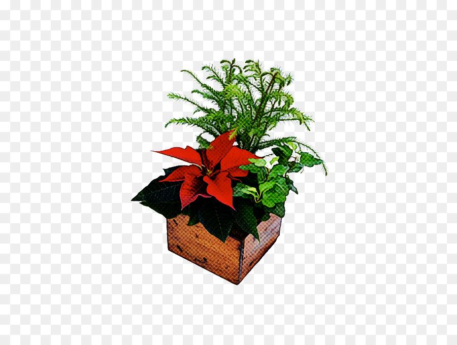 Descarga gratuita de Flor, Planta, Maceta Imágen de Png