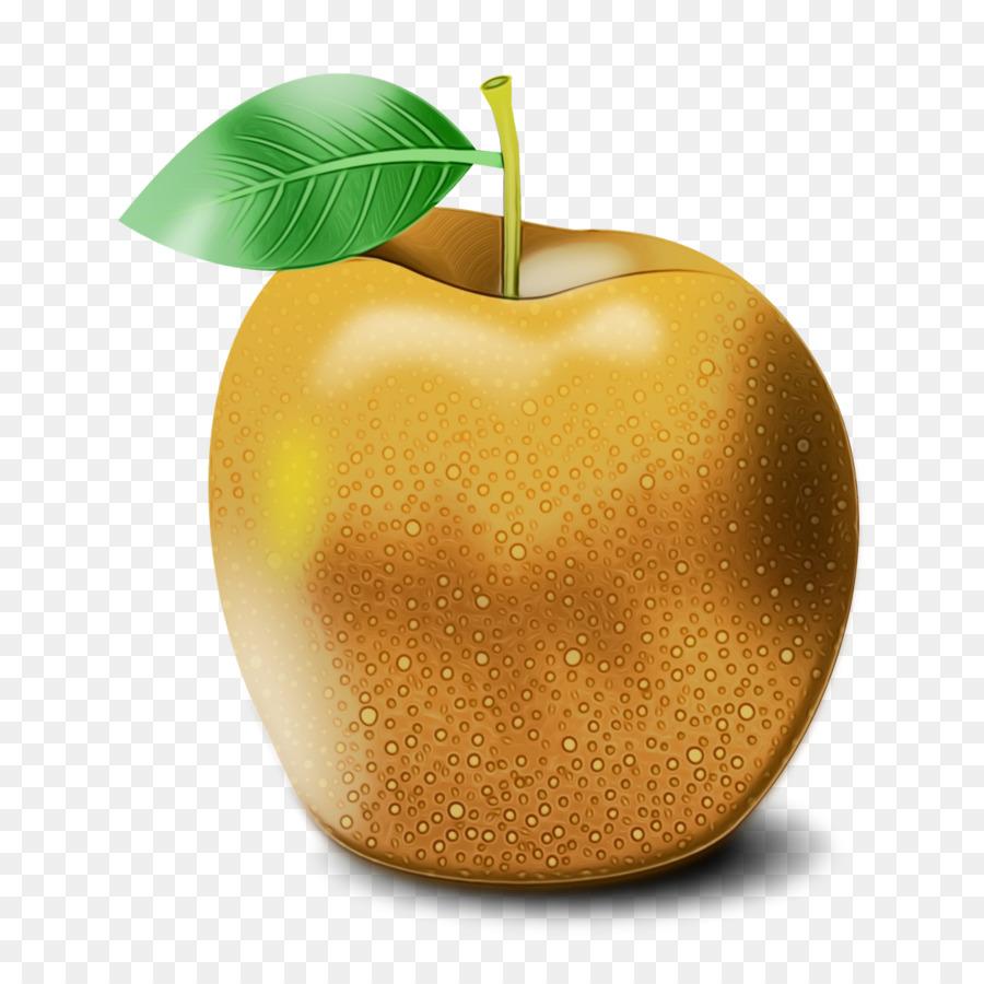 Descarga gratuita de La Fruta, Apple, Planta Imágen de Png