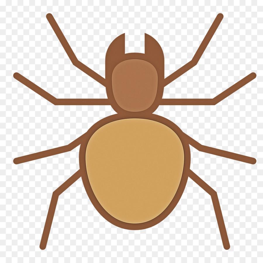 Descarga gratuita de Los Insectos, De Plagas, Araña imágenes PNG