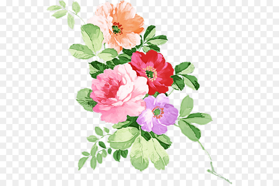 Descarga gratuita de Flor, Pétalo, Planta Imágen de Png