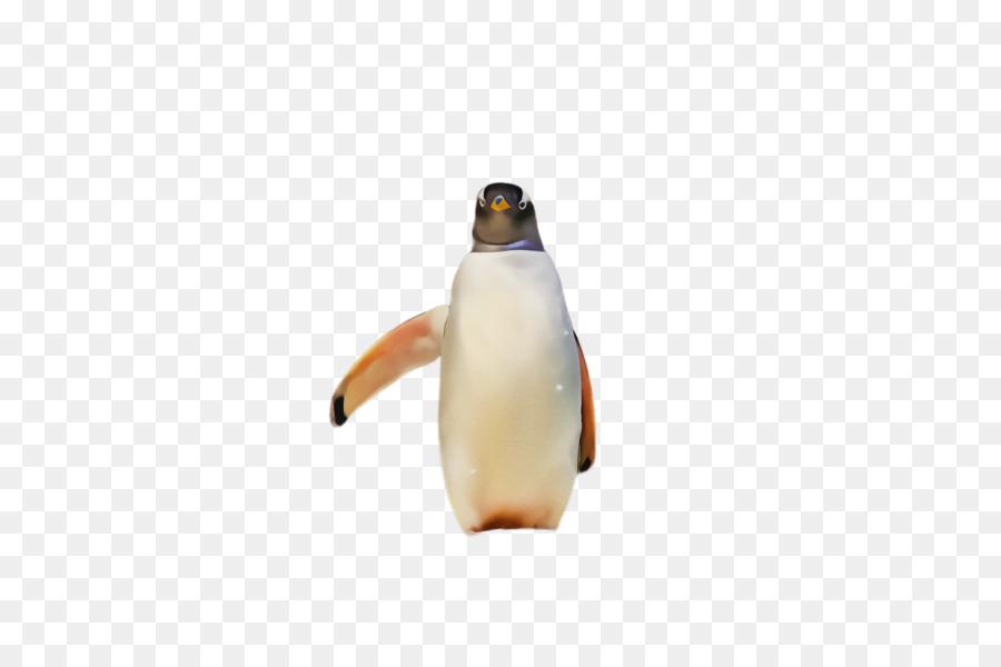 Descarga gratuita de Pingüino, Aves, Pingüino Emperador Imágen de Png