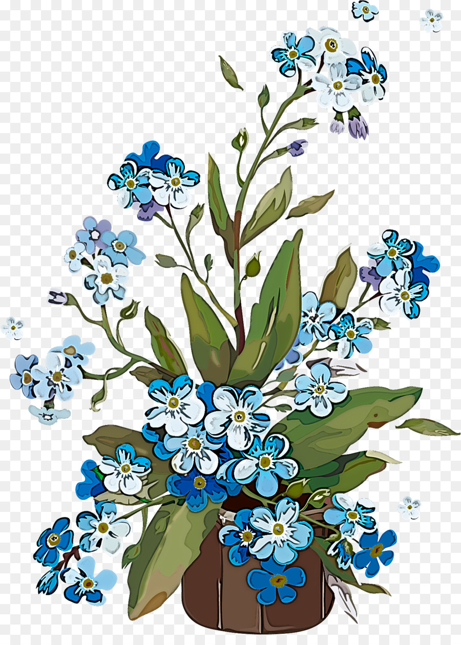 Descarga gratuita de Flor, Alpine Forgetmenot, Forgetmenot imágenes PNG