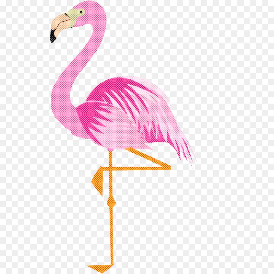 Descarga gratuita de Flamingo, Aves, Flamenco imágenes PNG