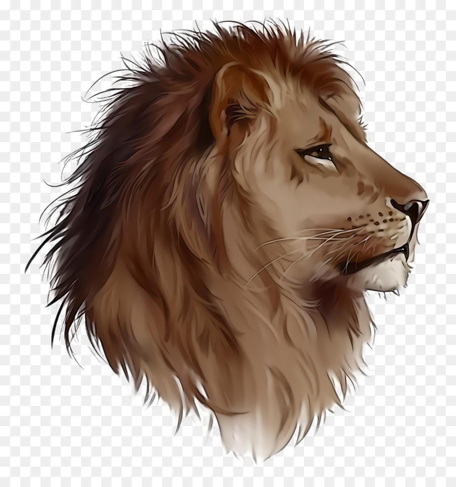 Descarga gratuita de León, Cabello, Masai León imágenes PNG