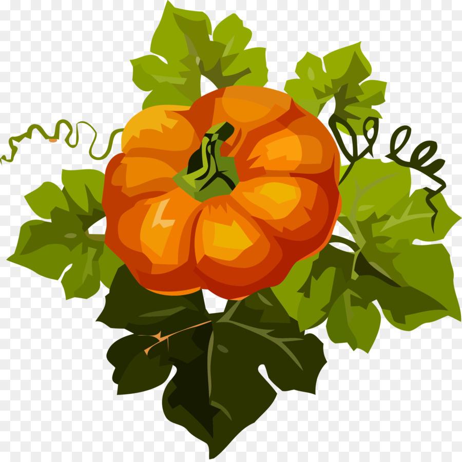Descarga gratuita de Naranja, Planta, Hoja imágenes PNG
