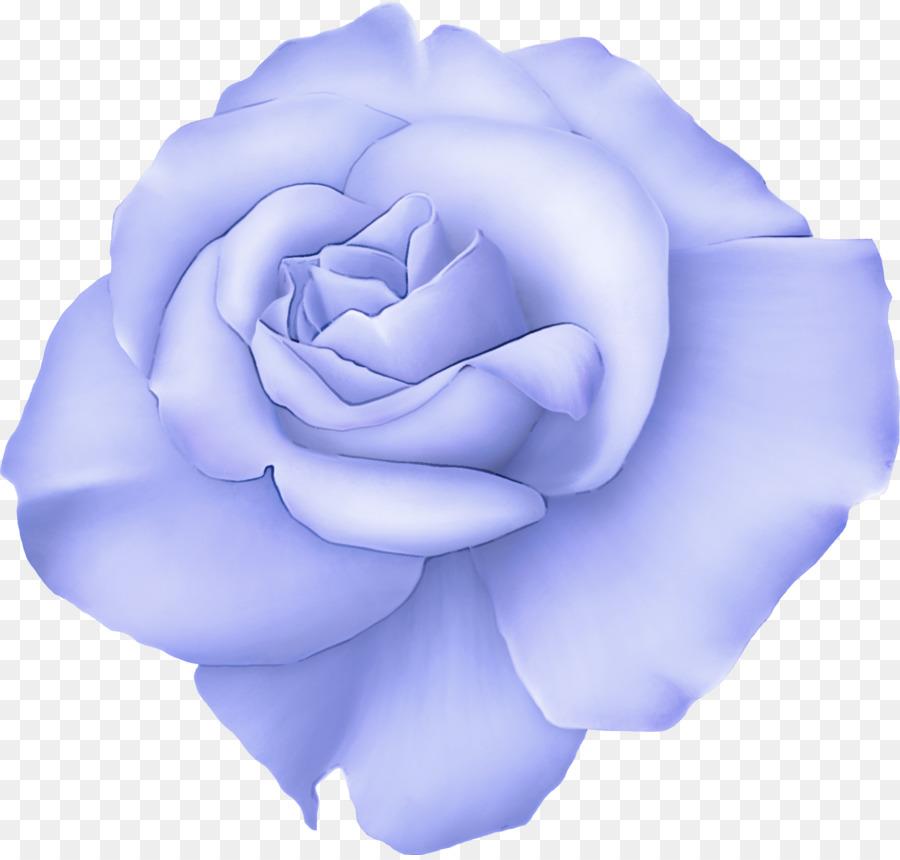 Descarga gratuita de Flor, Azul, Rosa Azul Imágen de Png