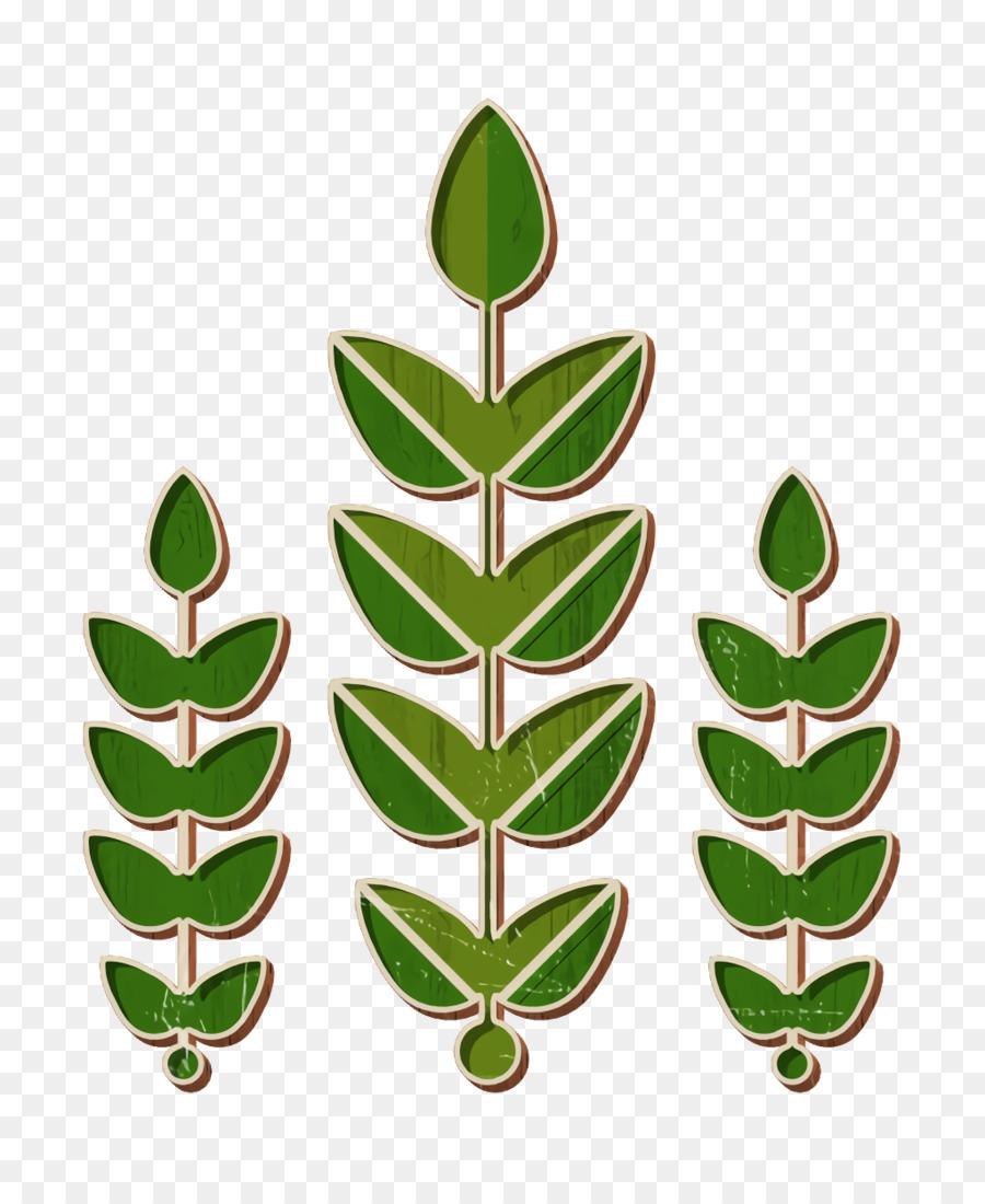 Descarga gratuita de Hoja, Planta, Flor Imágen de Png