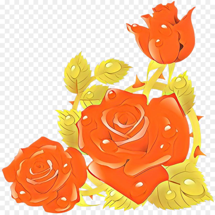 Descarga gratuita de Naranja, Las Flores Cortadas, Las Rosas De Jardín Imágen de Png