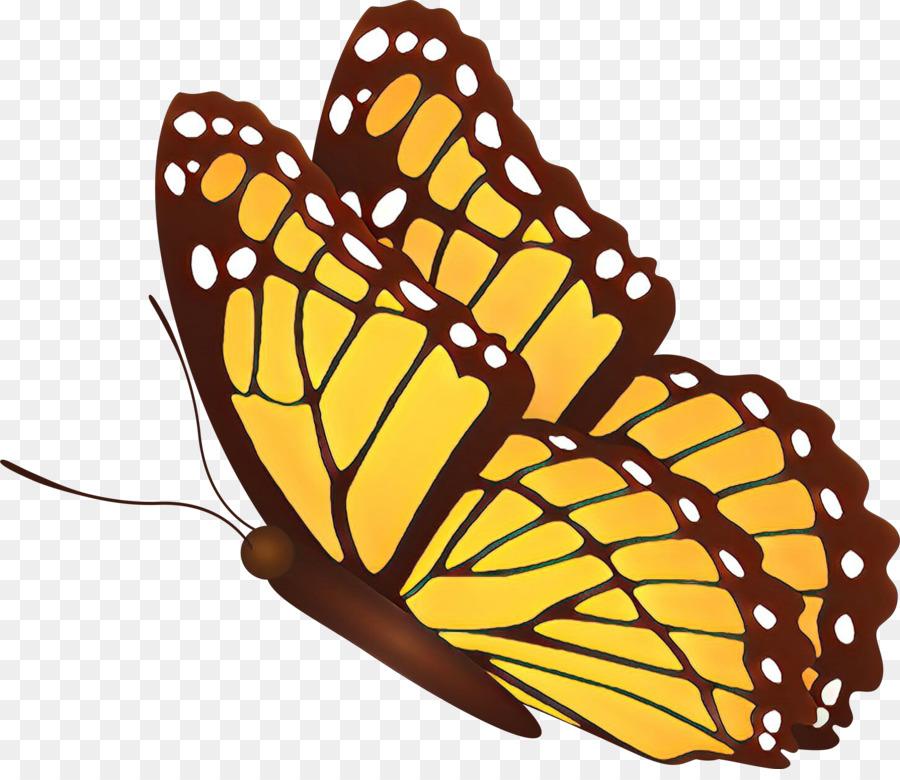 Descarga gratuita de Mariposa, Las Polillas Y Las Mariposas, La Mariposa Monarca imágenes PNG