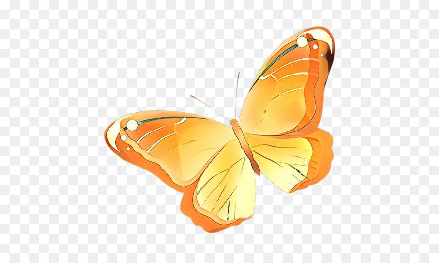 Descarga gratuita de Mariposa, Naranja, Los Insectos imágenes PNG