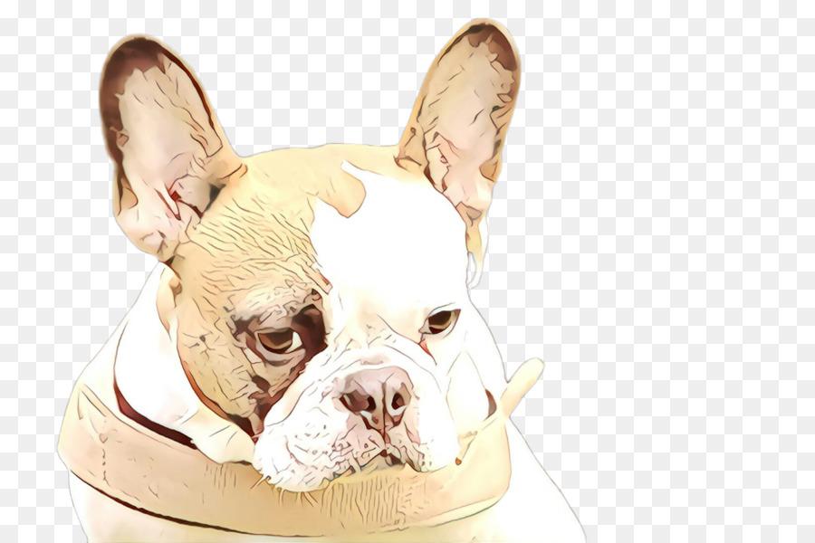 Descarga gratuita de Perro, Bulldog Francés, Bulldog imágenes PNG