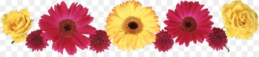 Descarga gratuita de Amarillo, Pétalo, Flor Imágen de Png