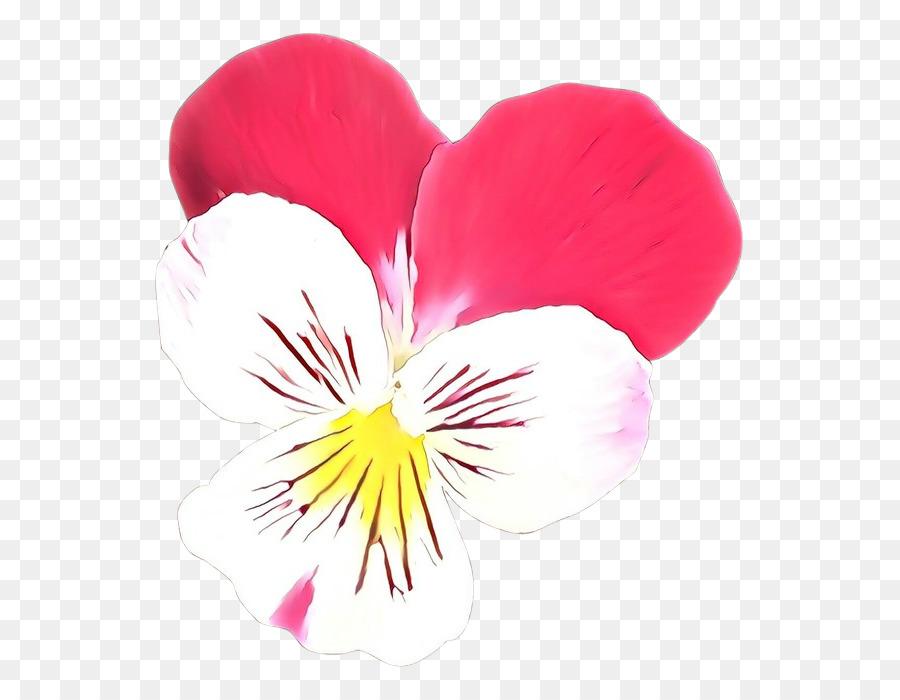 Descarga gratuita de Pétalo, Flor, Planta Imágen de Png